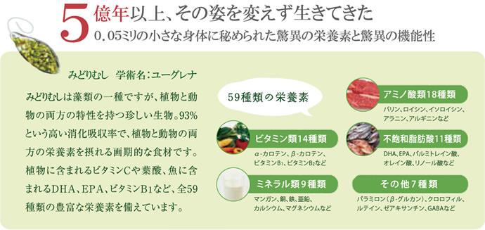 ユーグレナ(ミドリムシ)は59種類の栄養素を含む